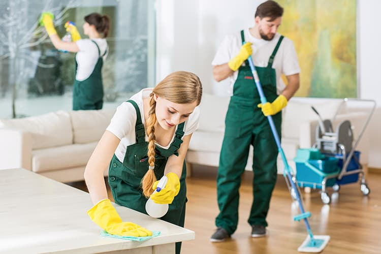 Summer Cleaning Tips for a Beautiful Home